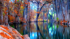 Nature HD Pictures